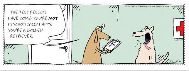 Mystery Fanfare: Cartoon of the Day: Golden Retriever