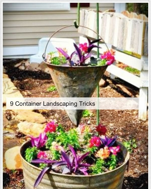 Container Backyard Tips, Container Garden Ideas, Container