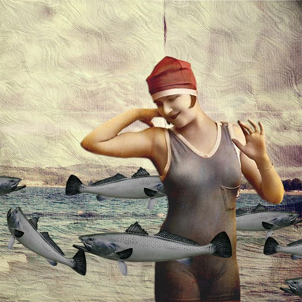 something fishy - jimmy lawlor