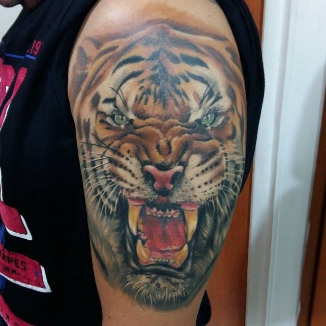 Persian Rug Tattoo: 1000+ Ideas About Tiger Tattoo Meaning On Pinterest