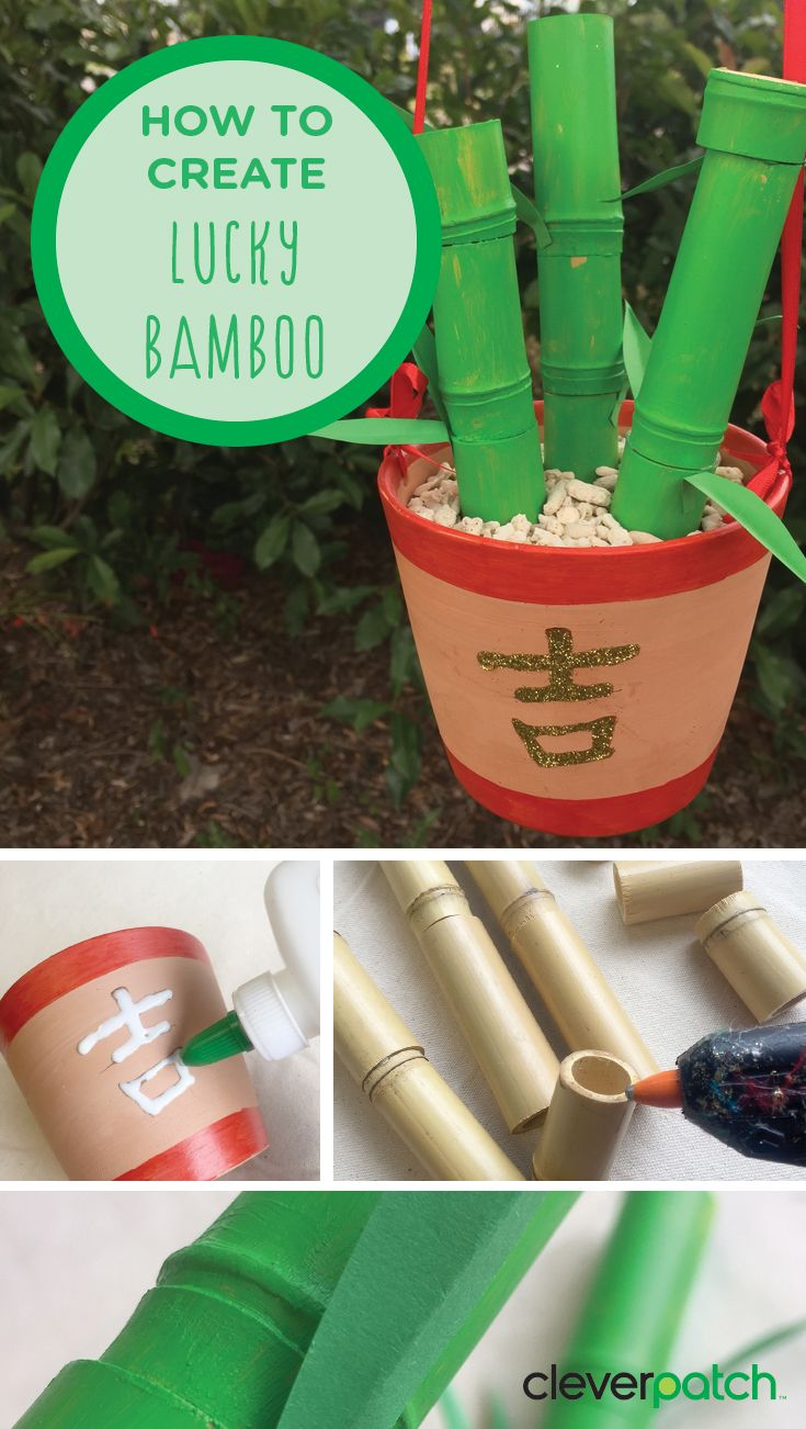 Chinese New Year Gift Idea: Lucky Bamboo  Give the gift of good luck this Chinese New Year by making this beautiful potted Lucky Bamboo!