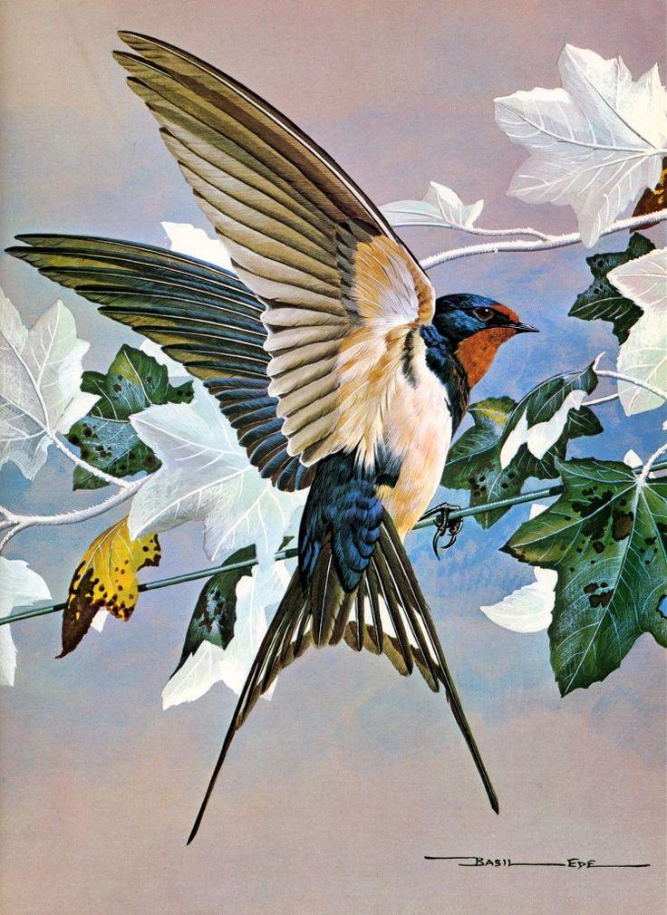 Swallow, by Basil Ede (British, b. 1931)                              …