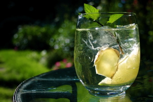 Mint. Basil. Shiso. Lemon Verbena. Rosemary. Cilantro. Dill. Whether they're muddled, infused, or simply snipped for a pretty and fragrant garnish, fresh herbs make a wonderful addition to summer cocktails. Here are 20 herbal (and boozy) drink recipes we love:: Lillet Blanc, Summer Cocktails, Herbal Drinks, Recipe Review, Lillet Cocktails, 2009 09 28 Lilletsin Jpg, Lillet Sin, Drinks Recipe, Sin Cocktails