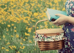 Fields Of Flower, Wildflowers, Summer Picnics, Perfect Life, Lifestyle Carefree, Baskets, Perfect Recipe, Good Books, Wild Flowers