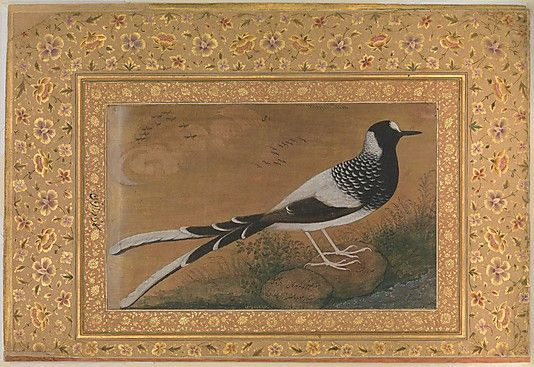 """""""Spotted Forktail"""", Folio from the Shah Jahan Album Painting by Abu'l Hasan - 1610-15."""
