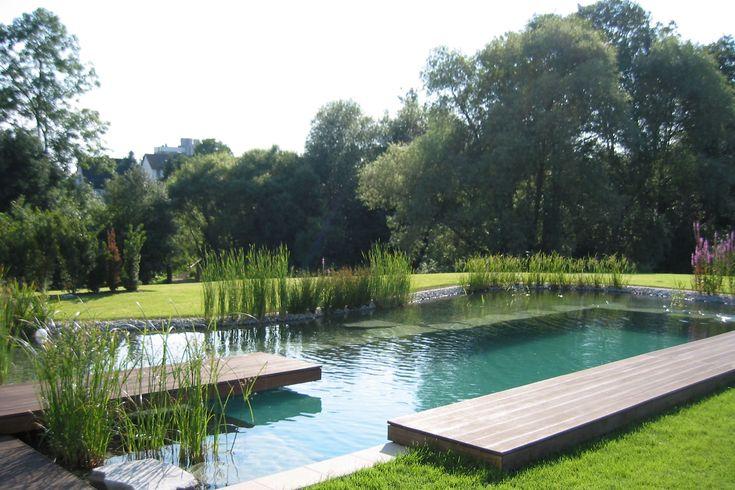 Bio pool inspiration pools pinterest haus for Environmentally sustainable swimming pools