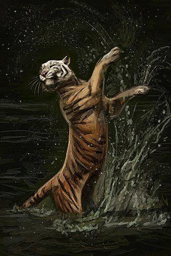Dancing Tiger by Maquenda.deviantart.com on @deviantART