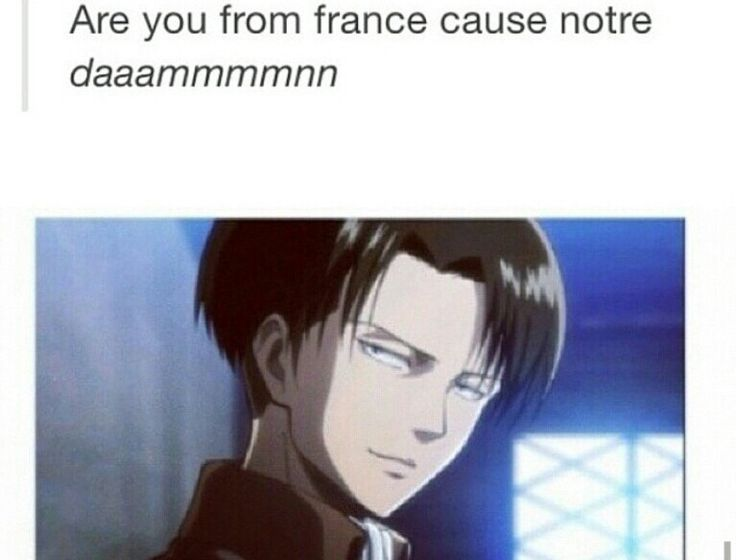 Levi Attack on Titan ~if he used this pick-up line on me, it would work, only cus its him.
