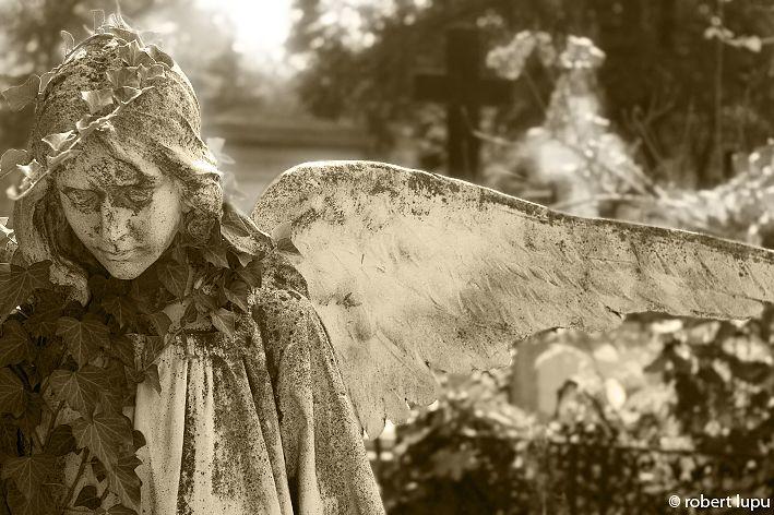 Sadness - by talented Robert Lupu