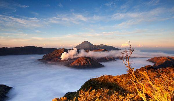 wisata gunung bromo.. www.suryanusantaratrans.com