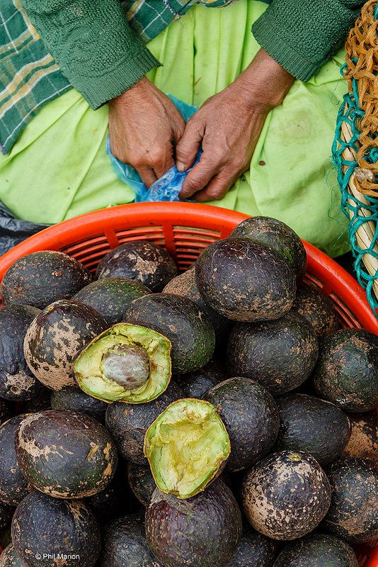 Avocados for sale at the market in Antigua, Guatemala
