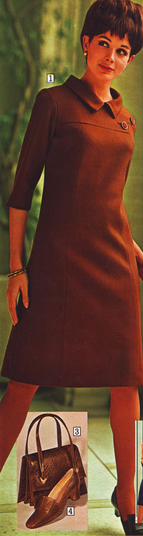 https://flic.kr/p/hFNMpt | Sears 68 fw brown dress