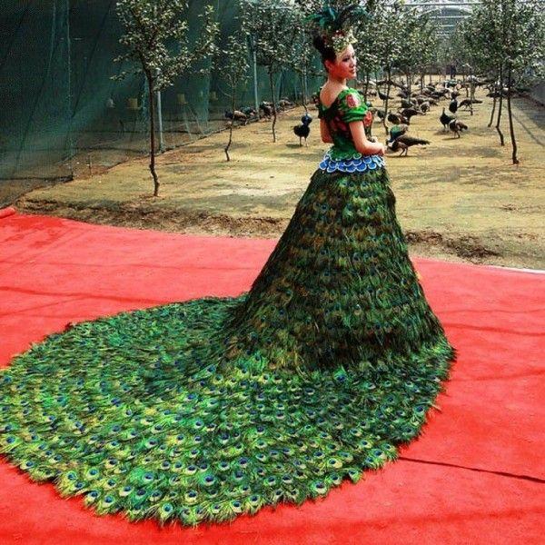 penas de pavão sobre o belo vestido de casamento verde