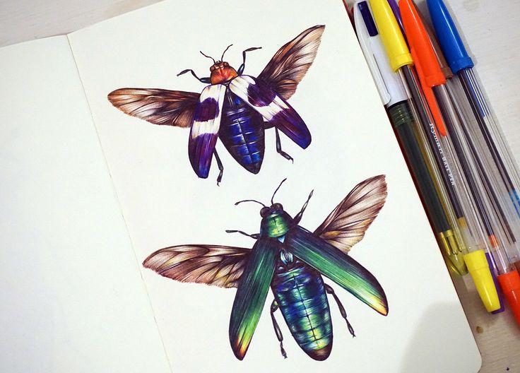 beetle wings, drawing, colorful