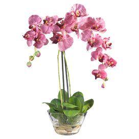 Silk Orchid Arrangement