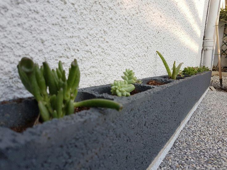 20 Best B Ton D Sactiv D Coratif Images On Pinterest Colors Garage And Gardens