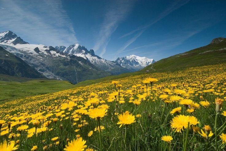 panorama montagnard