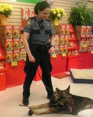 Cub Foods donated $ 12,000 to the Crystal Police Department in Minnesota to start a new K-9 unit. We're proud to contribute to such a great program!: Police Department, Crystals Police, Cubs Food, Food Donation, K 9 United