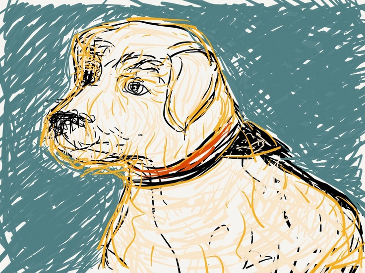 Dog by Ricardo Alves