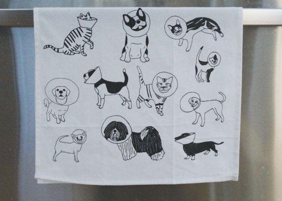 Gatti e cani strofinaccio regalo veterinario cono di pinkbabymouse
