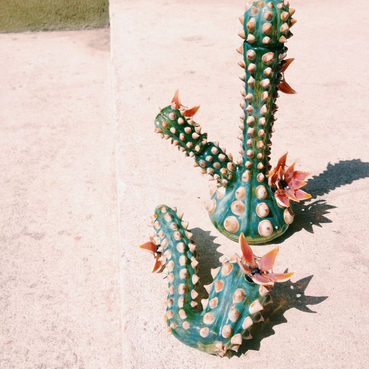 Unparalleled Glass Cactus Rig & Cactus Sherlock