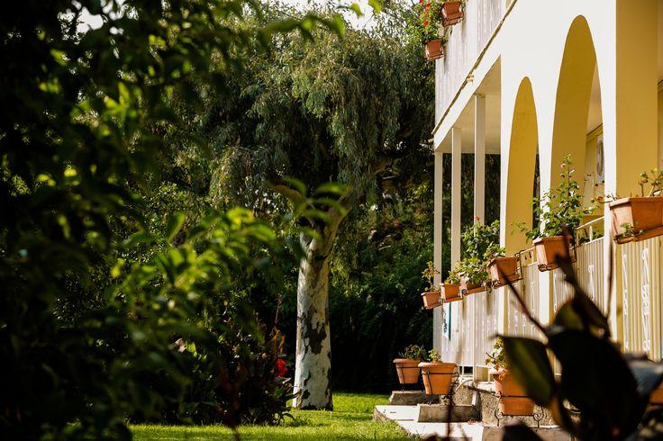 Spiti Prifti began in a garden!