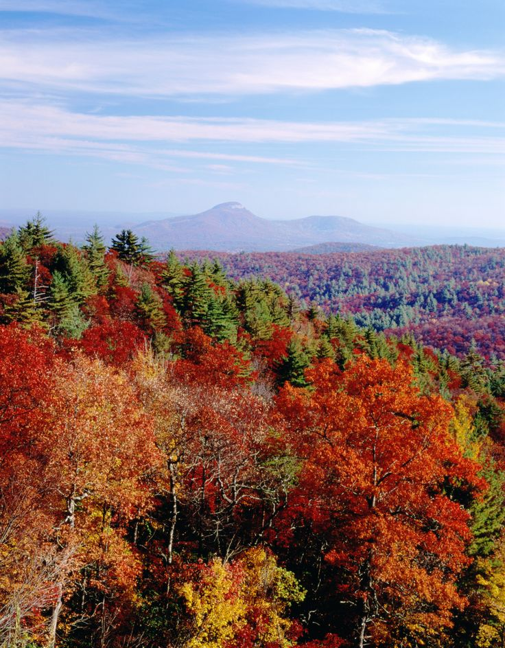 Can't get away until later in leaf peeping season? Not to worry— you can find beautiful fall colors in this mountain town of Clayton, Georgia until late October. Chattahoochee National Forest offers picturesque views and outdoor activities.