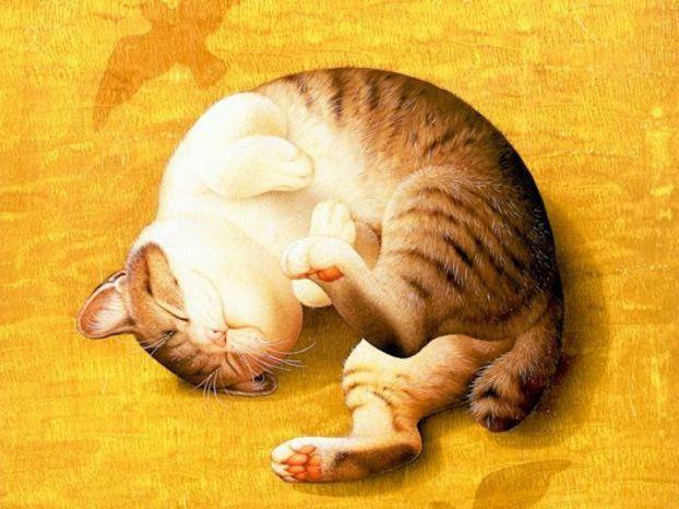 Ilustraciones muy tiernas de animales - Yaves.es Todo lo que ...