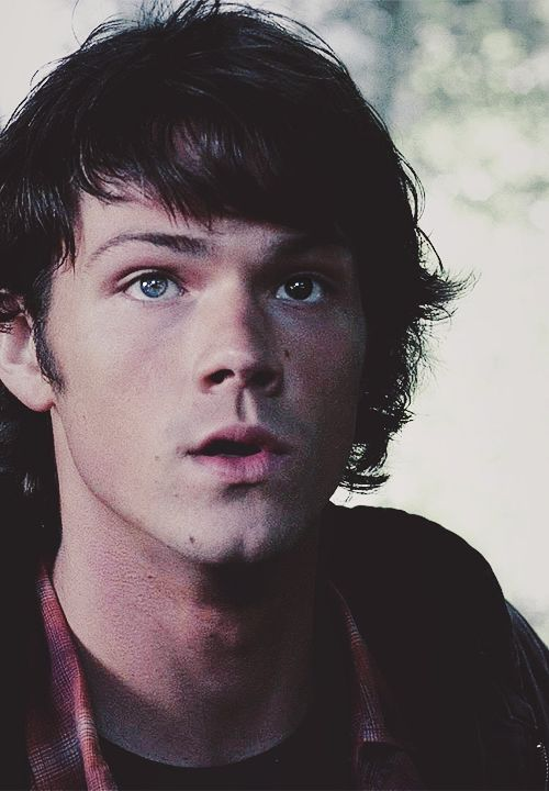 Sam Winchester. Jared Padalecki. #Supernatural