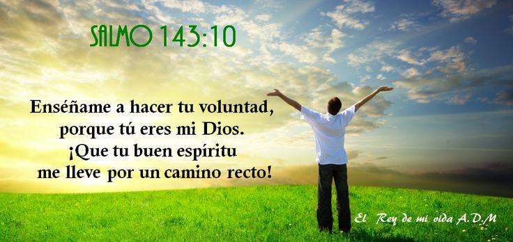 Salmo 143:10 Enséñame a hacer tu voluntad, porque tú eres mi Dios. ¡Que tu buen espíritu me lleve por camino recto!