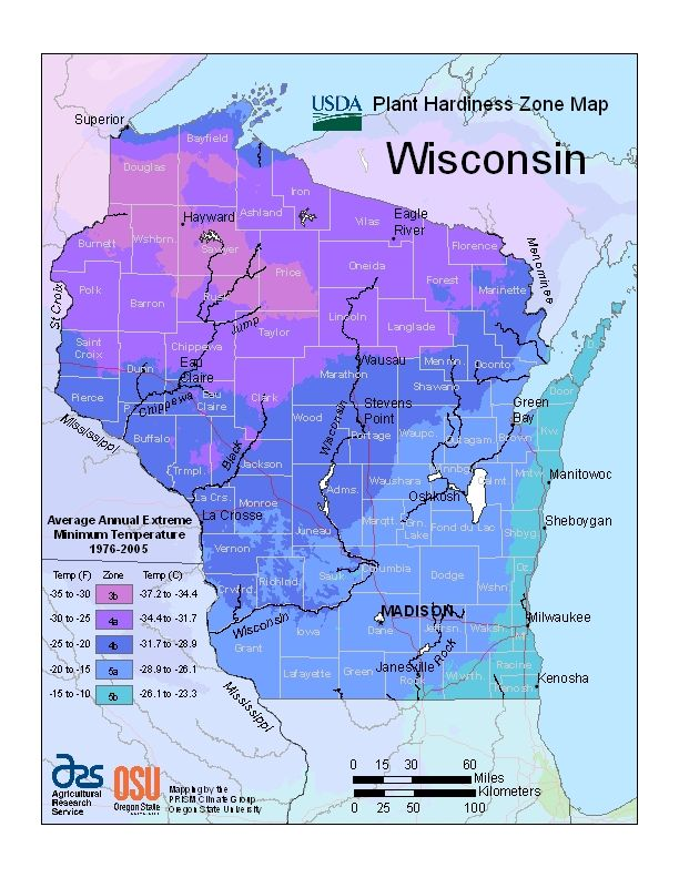 USDA Plant Hardiness Zone Map: Hardy Zone, Gardens Ideas, Green Thumb, Outdoor, Plants, 2012 Usda, 2012 Hardy, Flower, Gardens Landscapes Ideas