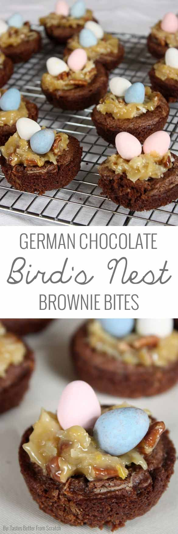 These German chocolate bird's nest brownie bites are beyond delicious! So fun and festive too! Classic dessert.