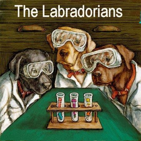 "The Labradorians -  Ready to Hang Labrador Retriever Art - ""Lab Techs"" Maddies ""A Lab's World"". Her illustrations are inspired by her own lab and created for everyone who loves a lab."
