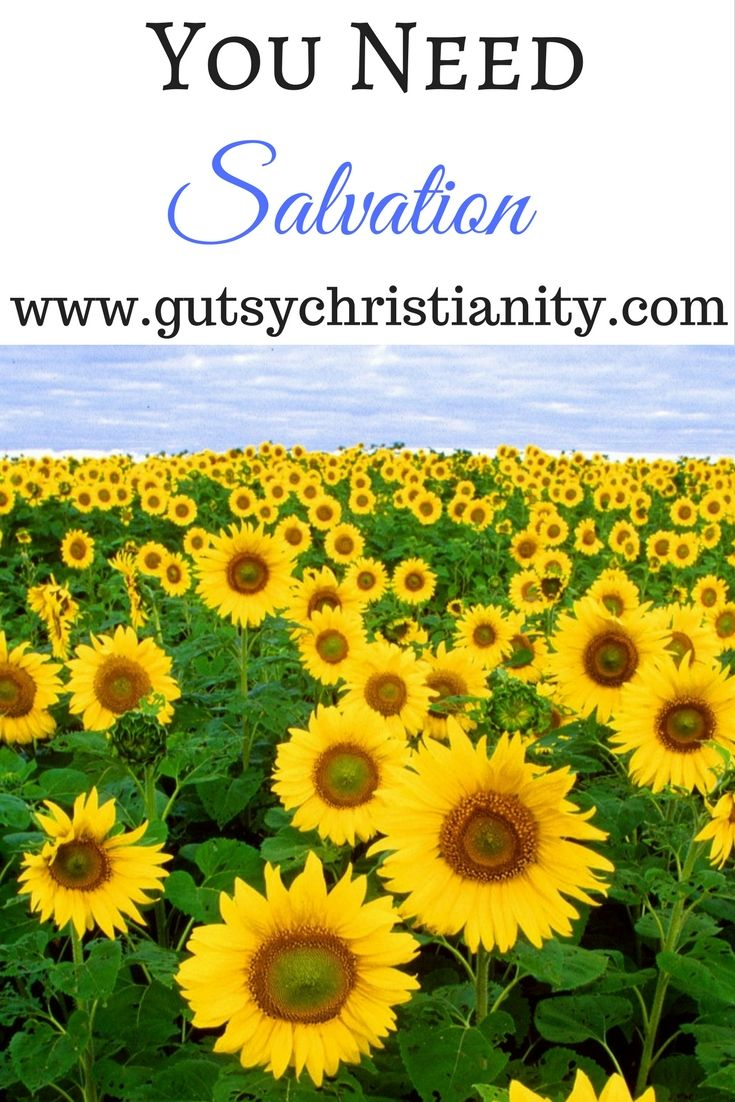 Can you be saved? Yes!! Find out how. Share with your friends #Jesuschrist #Jesus #salvation #church #faith #John316 #gospel #Bible #scripture Find Bible scriptures for women, biblical womanhood, devotions for women about Jesus Christ, God, church, faith, salvation, theology, and more at www.gutsychristianity.com