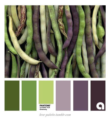 Fall Bedroom Decor Pinterest Bedroom Colour Grey Black And Purple Bedroom Decor Owl Bedroom Curtains: Best 20+ Purple Color Combinations Ideas On Pinterest
