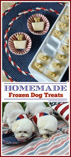 Quick and Easy Frozen Dog Treats for Summer, aka Copycat Frosty Paws Recipe | homeiswheretheboatis.net