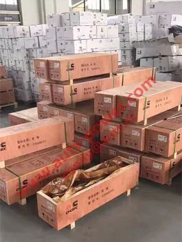 Dongfeng Cummins Parts Warehouse  Website: www.auts-power.com  Email: candy@auts.cc  Skype: candy.auts