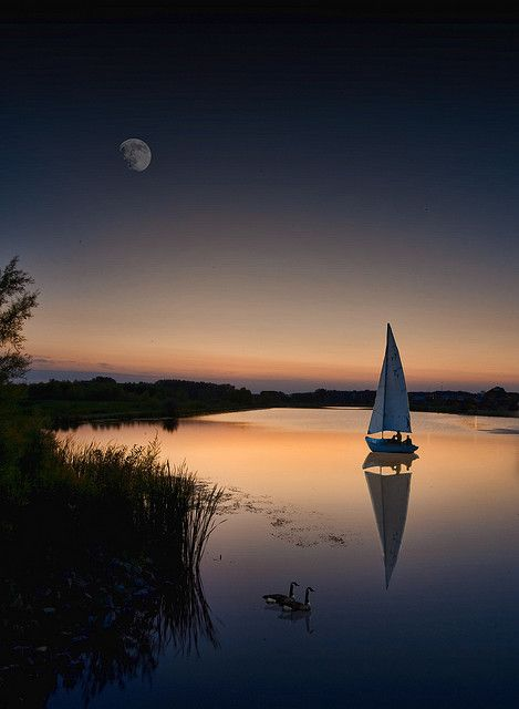 Evening: Sunsets, Peace, Lakes, Night Time, Sailing Away, Photo, Moonlight, The Moon, Sailing Boats