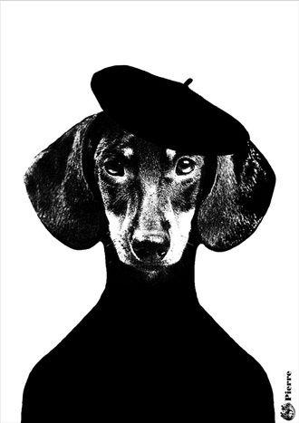 Hunden Pierre