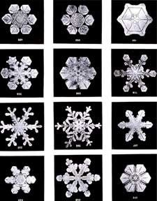 Snowflake patterns from Science NetLinks