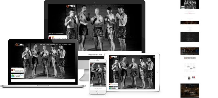 Toa Fighting Systems - website design by Forge Online http://www.forgeonline.co.nz/google-adwords/