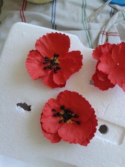 Poppies... maczki...