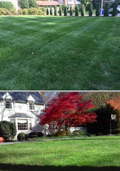 Check out Ernesto Ayala if you need garden sprinkler installation services. He provides professional sprinkler valve repairs as well as quality lawn care services.