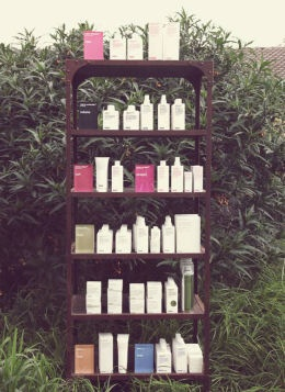 The Evo line consists of 36 different products divided into six families: calm, care, volume, curl, straight and style. These simple category names are part of the reason I love Evo so much. What you want for your hair and what your hair naturally is, is laid out right there, in one word.