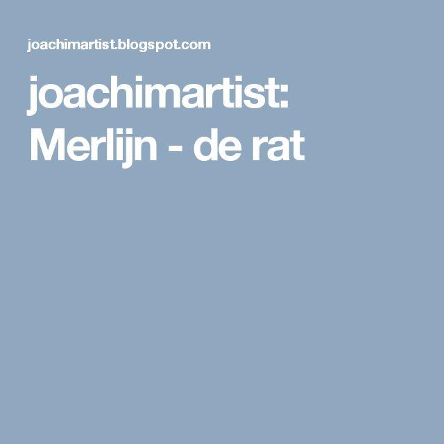 joachimartist: Merlijn - de rat