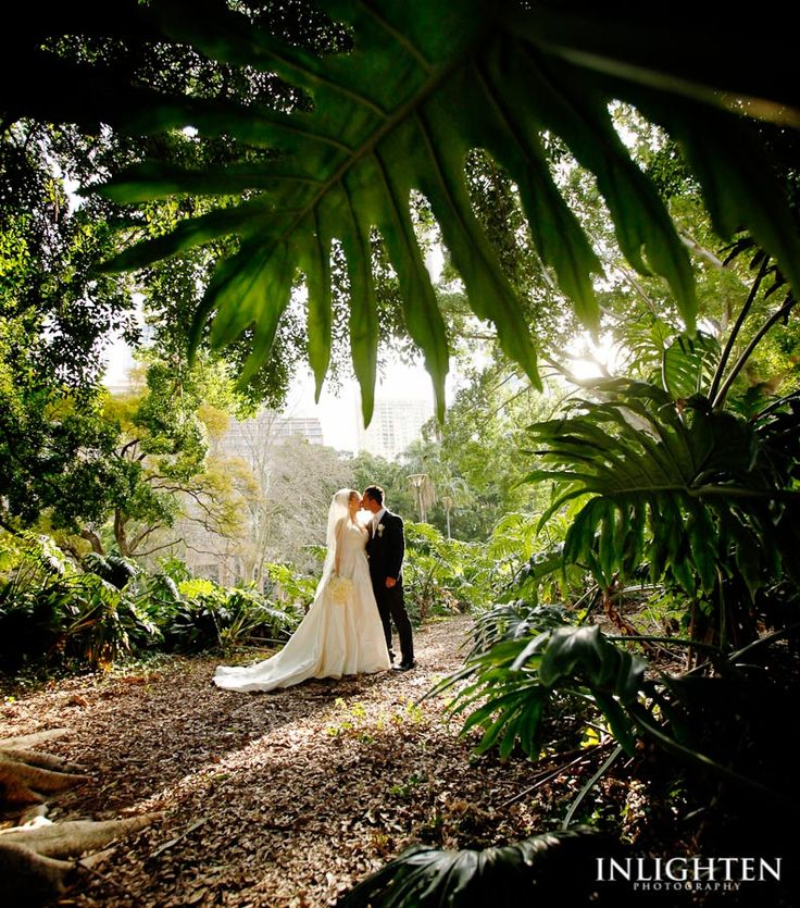 Location » Hyde Park Sydney.   Romantic, imaginative, stunning, serene,  lovely, environment. Ideal for outside wedding portraits