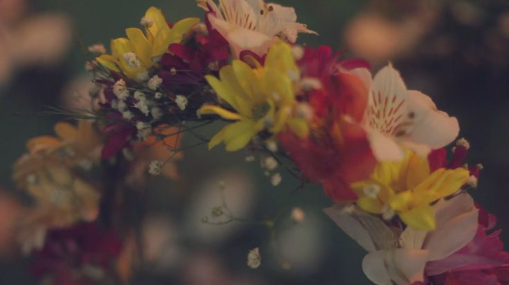 A frame from our videos in Blackbird Photo Studio . (:  Website   Facebook   Tumblr   . notonoto .