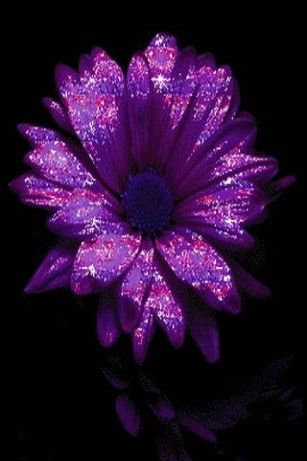 Purple Glitter Flower