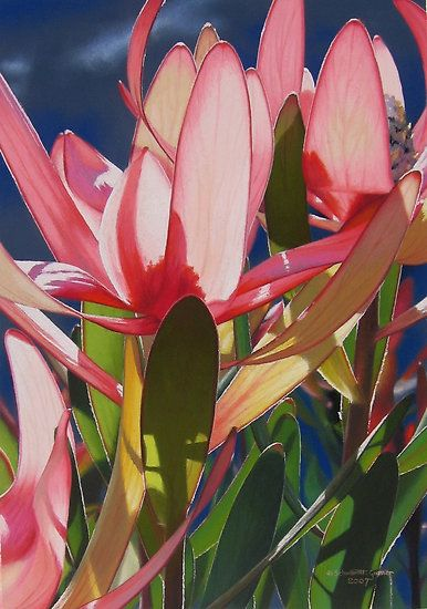 Light and Colour by Heidi Schwandt Garner - colored pencil