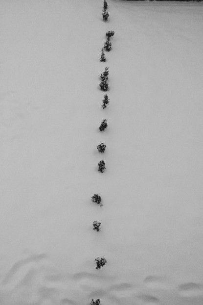 Winter | Romania | @vsco
